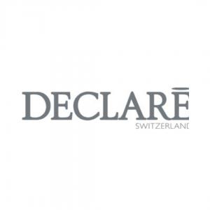 Logo DECLARE